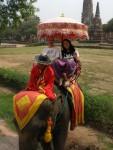 Elefanten-Reiter