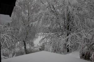 WinterMars2016
