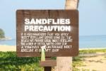 Vorsicht! Sandflöhe