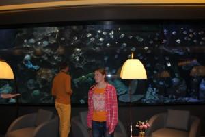Mini-Korallenriff für die Casino-Gäste